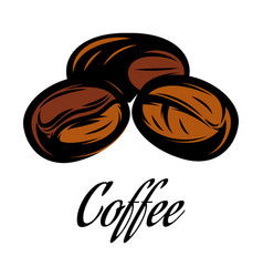 color of a coffee bean vector image