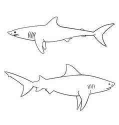 coloring book for children sharks vector image