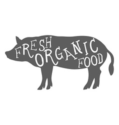 Hand Drawn Farm Animal Pig Fresh Organic Food vector image