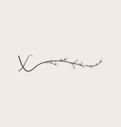Hand drawn floral x monogram and logo vector