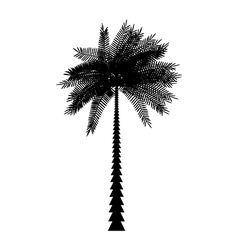 Palm icon vector