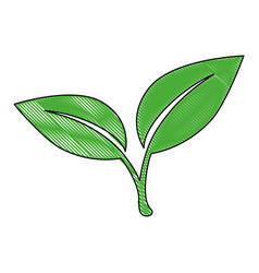 Stem with leaves icon vector