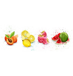 watercolor fruits set apricot lemon vector image