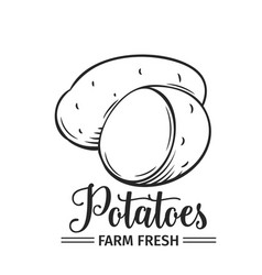 hand drawn potatoes icon vector image vector image
