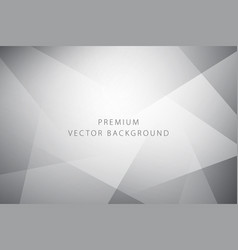 abstract premium background vector image