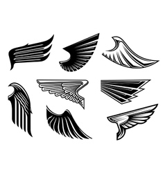 Black heraldic and tribal wings elements vector