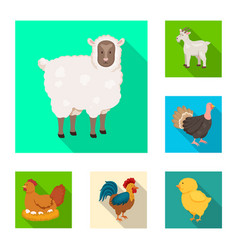 design of breeding and kitchen sign set of vector image