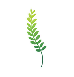 Flat abstract green fern plant icon vector