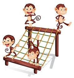 Four playful monkeys vector