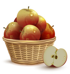 Full wicker basket with red apples vector