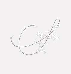 Hand lettering floral s monogram and logo vector