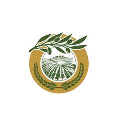 olive-leaf-logo vector image