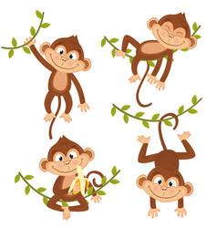 Set isolated monkey hanging on vine vector