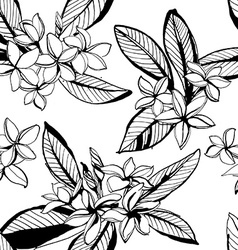 Tropical floral summer seamless pattern vector
