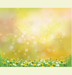spring floral background vector image