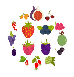 berries icons set in flat style vector image