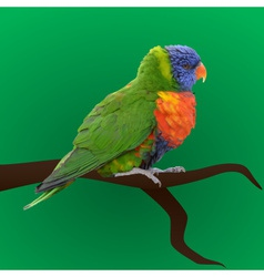 Colorful parrot sitting eps10 vector