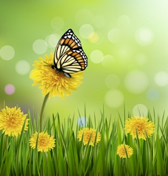 Green summer background with dandelions and a vector image vector image