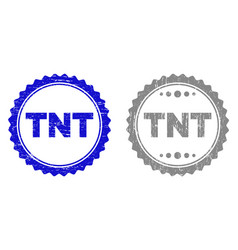 grunge tnt scratched stamp seals vector image