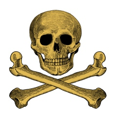 Skull and crossbones in engraved style vector image vector image