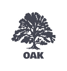 Oak Tree Logo Silhouette vector image