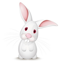 little rabbit vector image