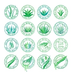 Aloe vera design elements Stamps collection vector image