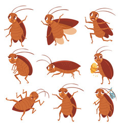 cartoon cockroach mascot angry cockroaches vector image