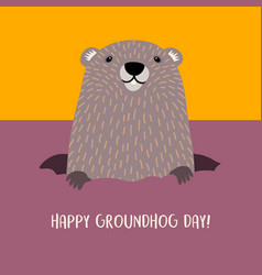 Happy groundhog day with cute groundhog vector