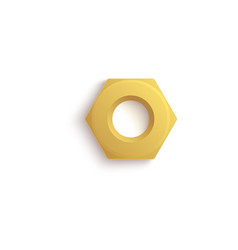 Isolated golden hex nut with realistic stainless vector