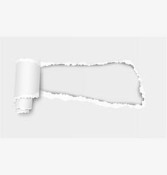 ragged hole in sheet of white paper vector image