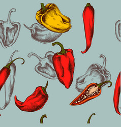 seamless pattern of peppers hand drawn vector image