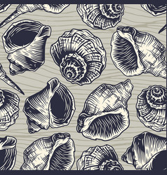 Seamless pattern seashell mollusk ocean wild life vector