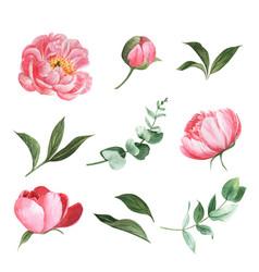Various flower watercolor set design element vector