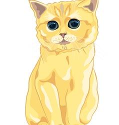 cute fluffy british kitten vector image
