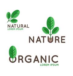 organic logo design vector image