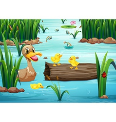 A pond with animals vector