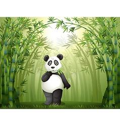 Cartoon panda bamboo forest vector