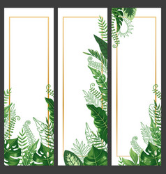 Exotic leaves banner tropical monstera leaf palm vector