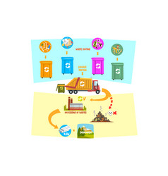 flat infographic showing waste recycling vector image