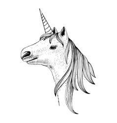 hand drawn head unicorn vector image