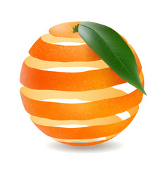 Orange cut in a spiral isolated image realistic vector
