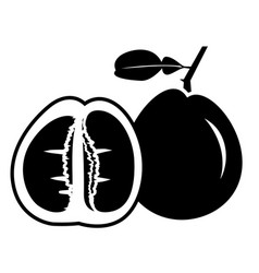 Pomelo balck icon vector