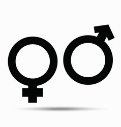 symbols of male and female on white vector image