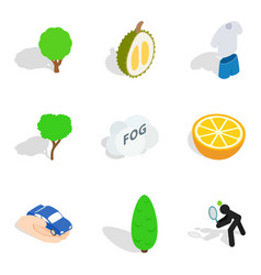 Vitality food icons set isometric style vector