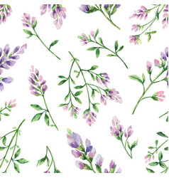 watercolor seamless pattern with alfalfa vector image