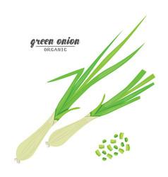 cartoongreen onion ripe vehetables vegetarian vector image vector image