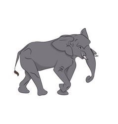 elephant color vector image