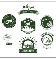 Set of retro vintage farm fresh labels badges and vector
