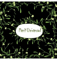 Christmas background with evergreen mistletoe vector image vector image